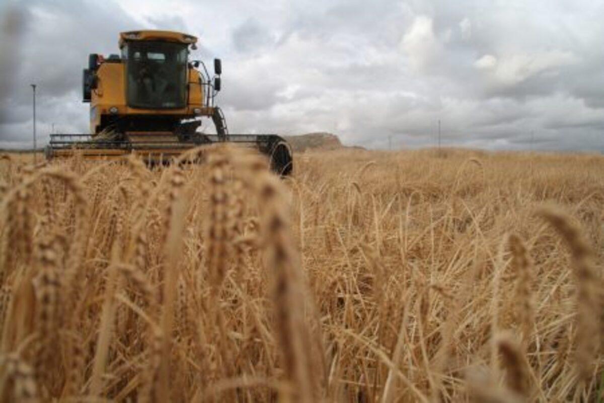 Imagen genérica de una máquina agrícola trabajando en un campo./ Banco de imágenes