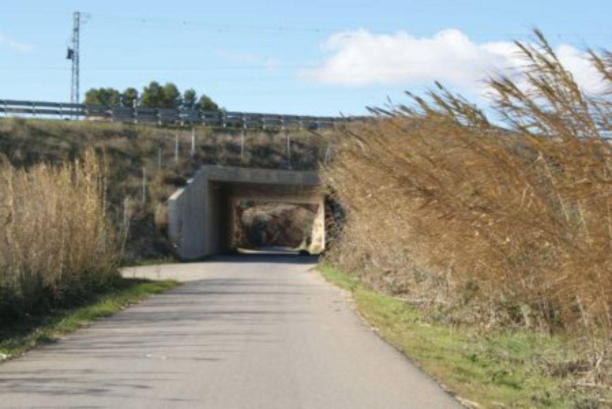 cuatro-municipios-acogeran-pruebas-usar-cana-biomasa