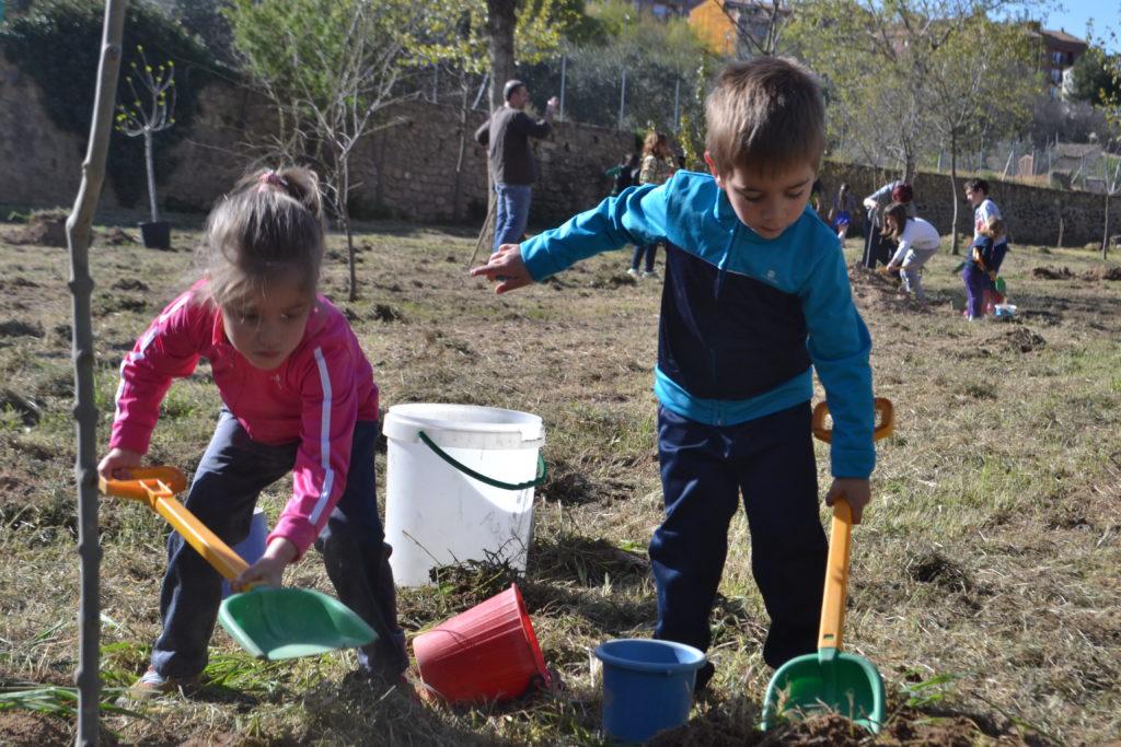 Los ni os alca izanos celebran el d a del rbol en la for Como crecen los arboles para ninos