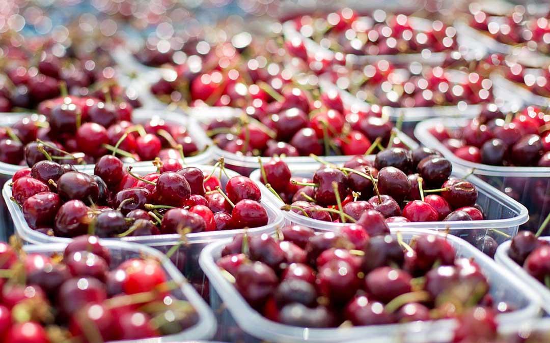 Imagen de archivo de cerezas, cuya campaña arranca próximamente./ L.C.