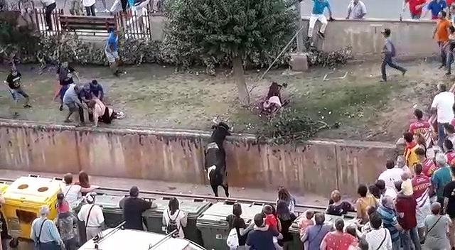 El toro embiste un carrito de bebé (vacío), y después una mujer está a punto de caer al río cuando junto a otros asistentes sale corriendo en desbandada