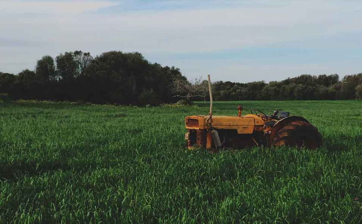 El objetivo es lograr que en Alcañiz se transforme el producto agrícola local y no solo que se produzca y se venda para crear riqueza en otras zonas.