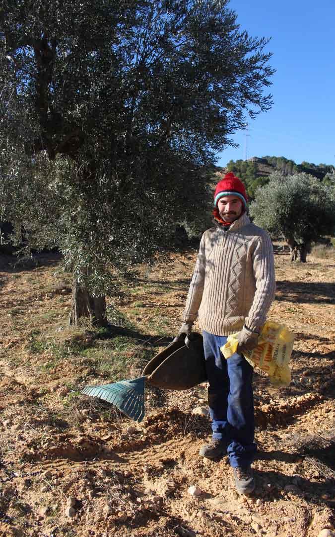 alloza morcilla vegana raul olivas