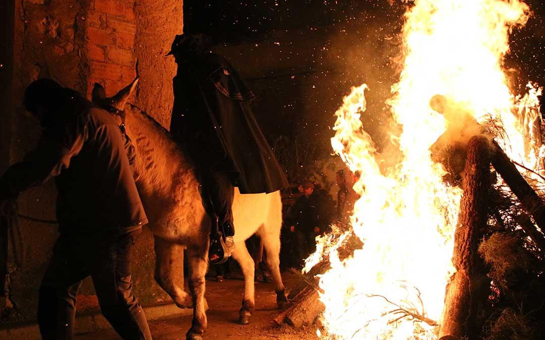 caballo hoguera santa encamisada