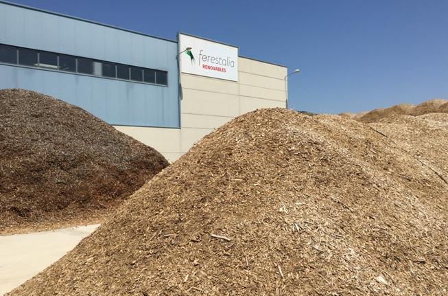 Forestalia quiere crear una empresa termoeléctrica de biomasa en la cuenca minera turolense como la de Cubillos de Sil (León)
