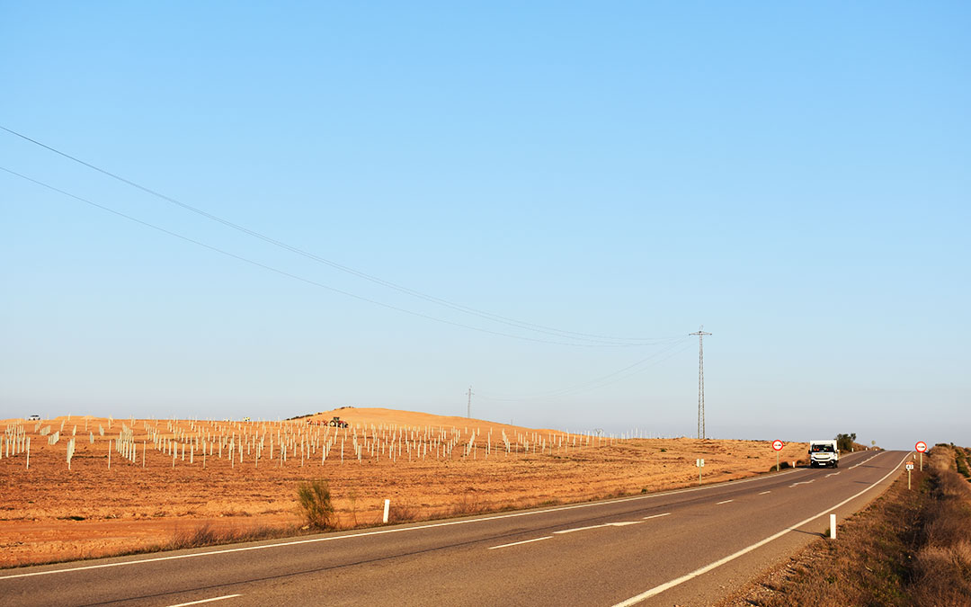Aspecto de las plantas en construcción en el término municipal de Chiprana, a su paso por la A-211, esta semana.