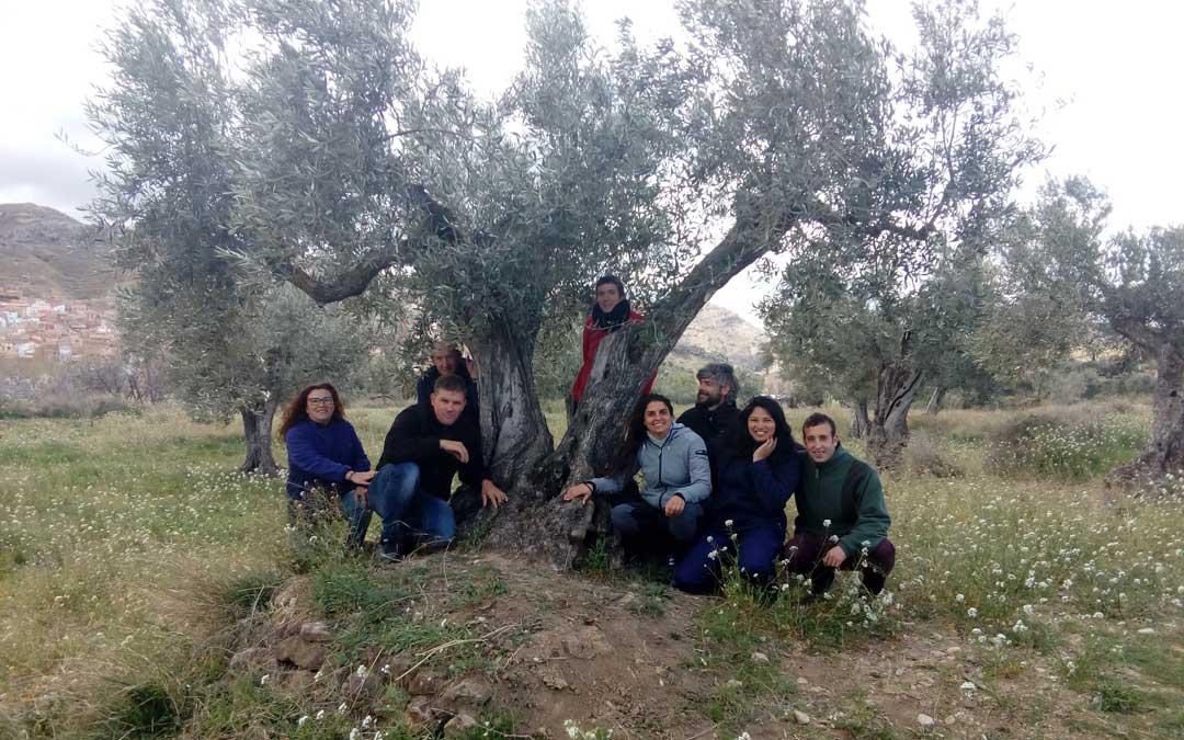 Los ocho alumnos y alumnas que se forman en el Taller de Empleo en torno al cuidado y cultivo de los olivos
