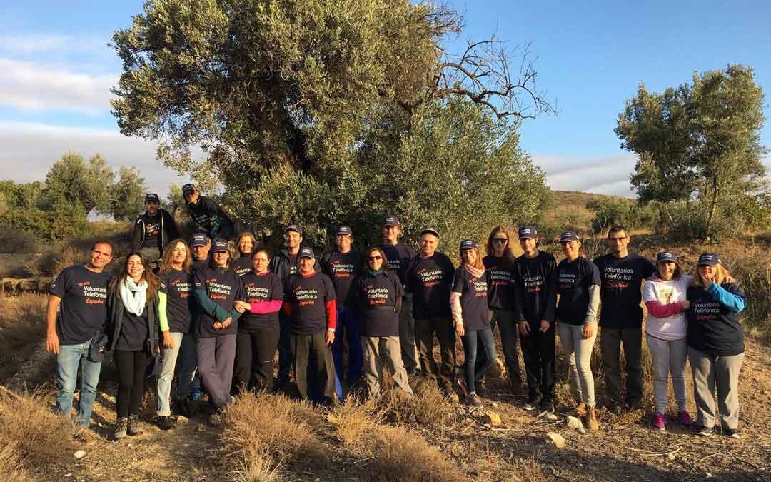 Foto de familia de Apadrina un olivo, donde se realiza el Taller, junto a varios padrinos en las inmediaciones de Oliete