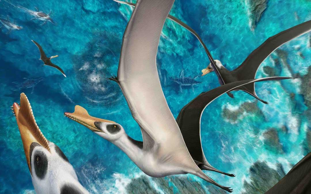 este reptil volador encontrado en obon se caracteriza por gran envergadura