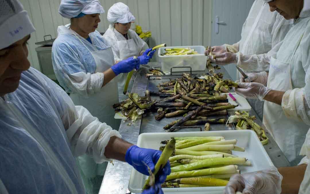 Alacón saca a licitación su planta conservera para fijar población
