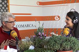 Espacio Verde Plantas aromáticas