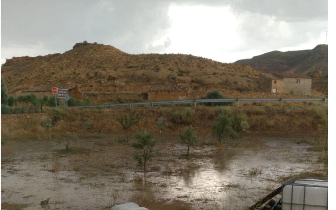 Campo de Albalate a lo largo de la tarde de ayer. // Rafa Royo