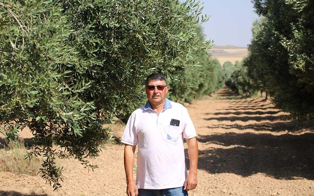 alfredo caldu presidente do aceite de oliva bajo aragon