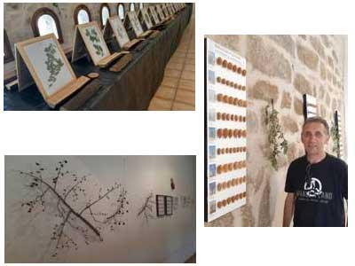 Exposición «La Biodiversidad» en La Codoñera