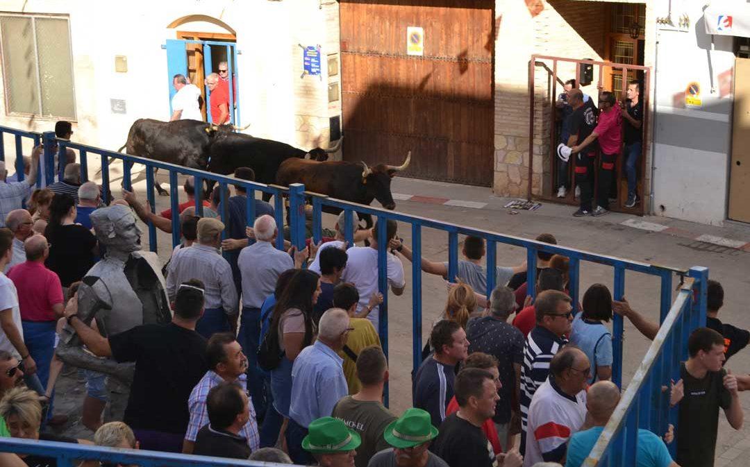 Los albalatinos viven un emocionante y masivo encierro de vaquillas