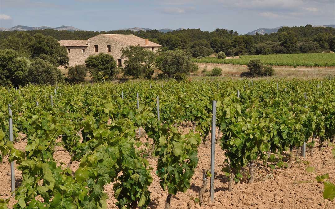 Los vinos Lagar d'Amprius y su bodega ya son oficialmente ecológicos