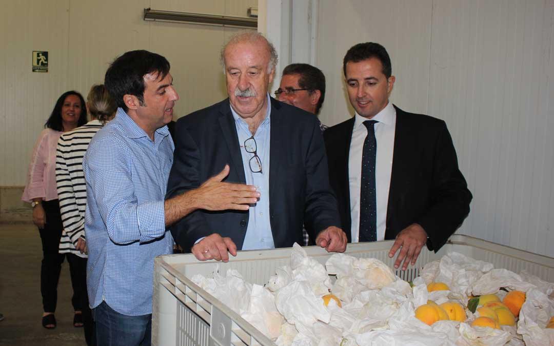 En la Calandina escuchando las explicaciones de su gerente, Antonio Cerdán / L. Castel