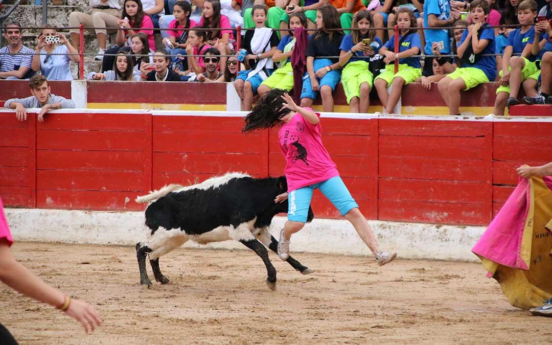 futbol-vaca-alcaniz-cogida