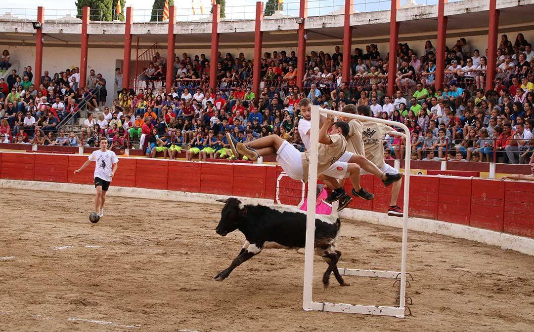 Con la vista entre el balón y la vaca