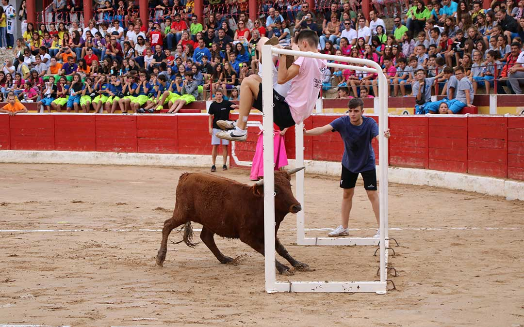 futbol-vaca-alcaniz-porteria