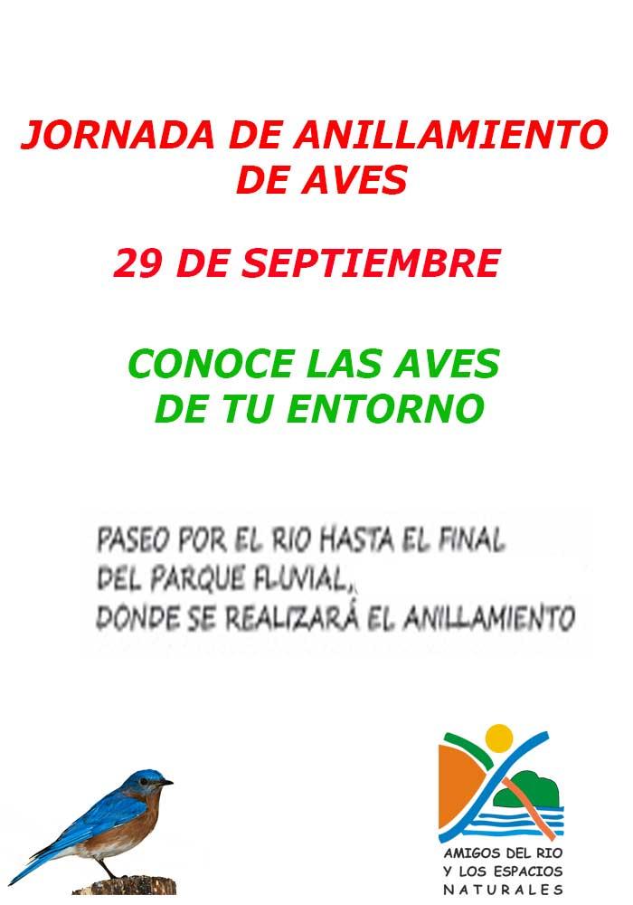 Jornadas de anillamiento de aves en Alcañiz