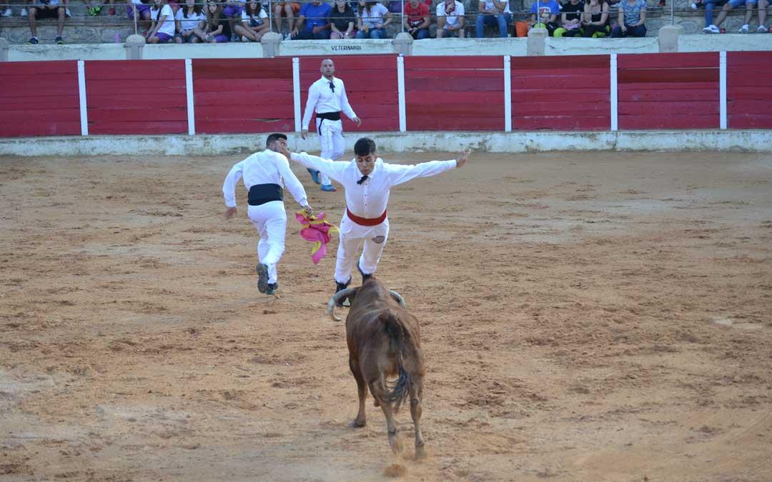 Uno de los muchos saltos que sobre la vaquilla han realizado los componentes de Casta Aragonesa en Calanda
