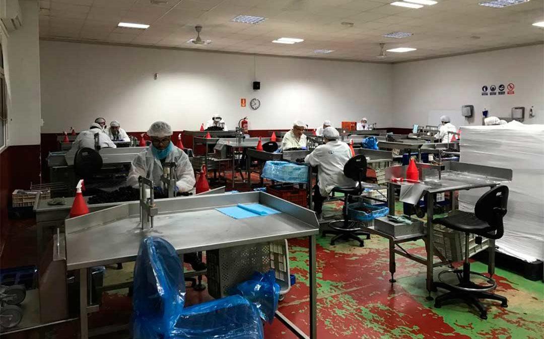 El Centro Especial de Empleo de ASAPME aumentará su plantilla en unas 20 personas