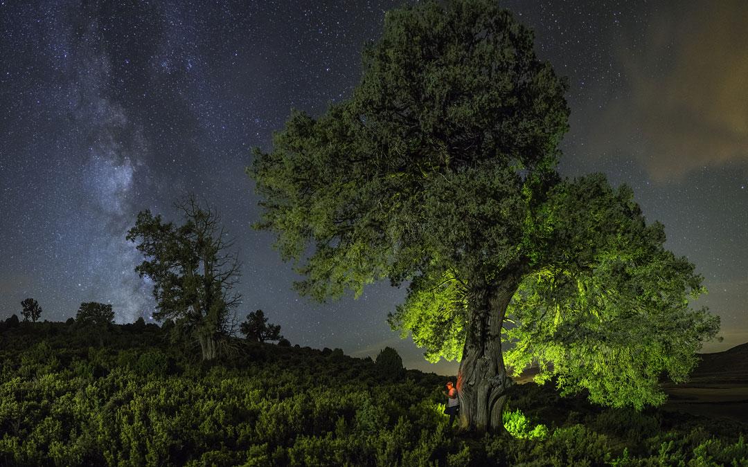 Fotografía ganadora de Tomás Plaza Serrano