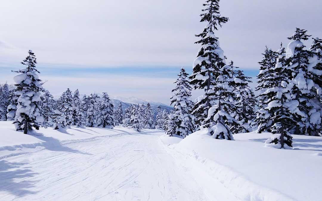 Paisaje nevado al norte de Japón.
