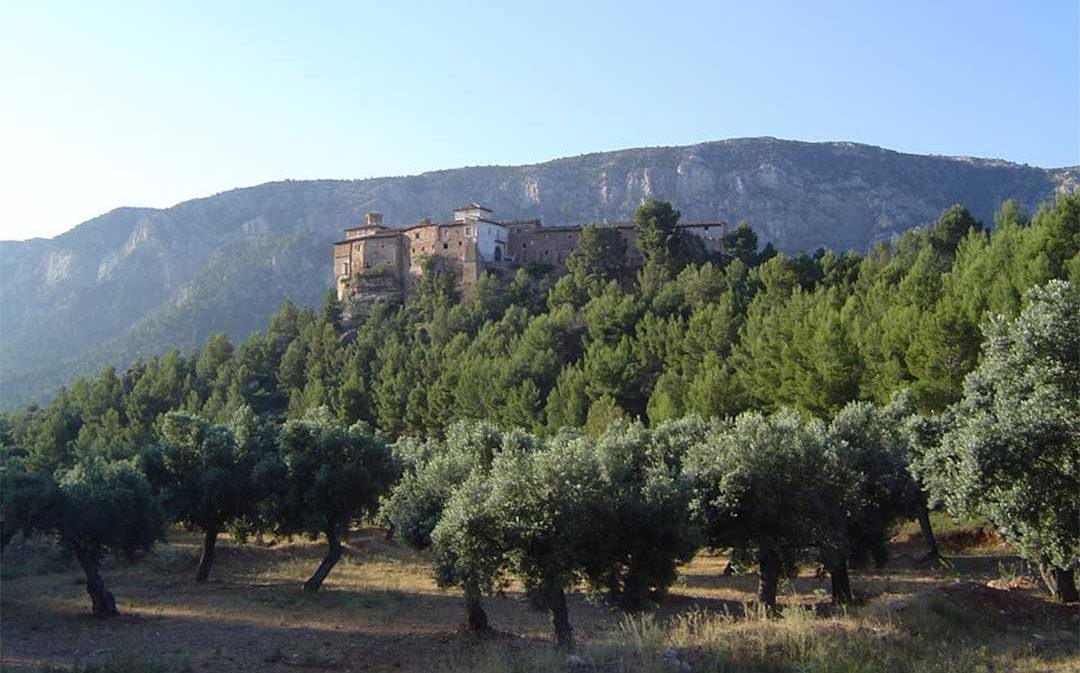 DGA destinará 215.434 euros a la ordenación de montes en cinco municipios turolenses, entre ellos, Albalate y Ariño