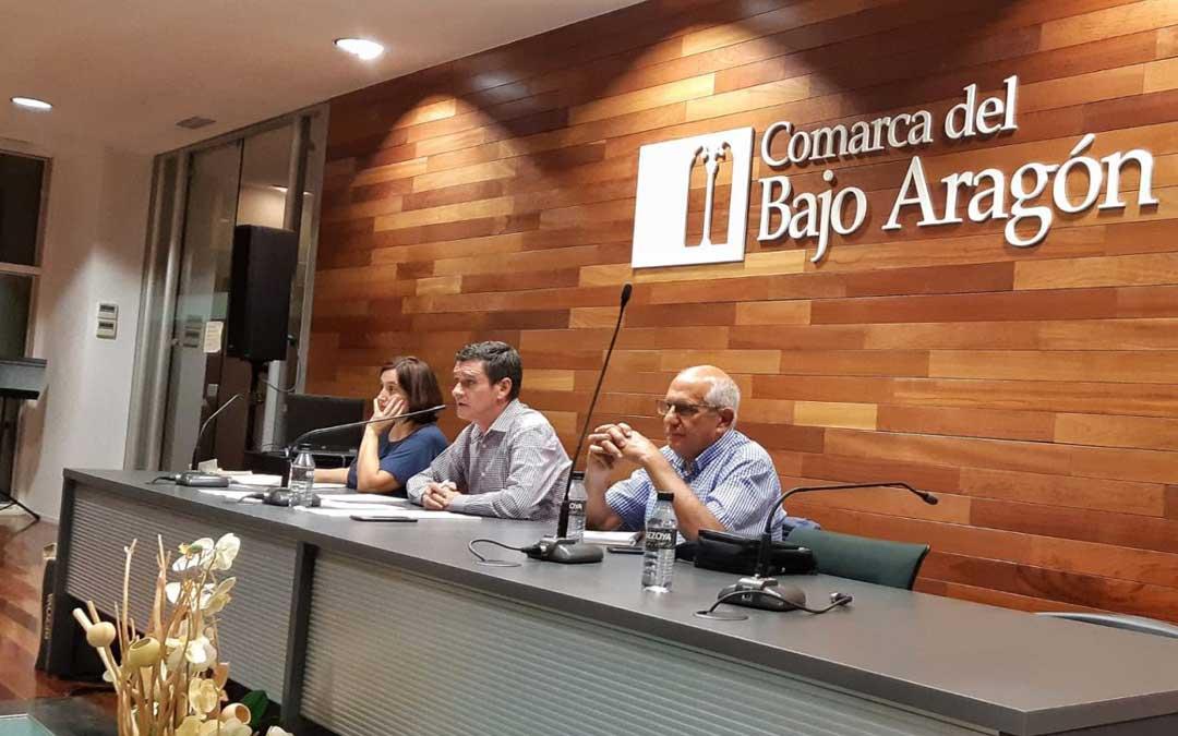 Pleno de la Comarca del Bajo Aragón en el que se aprobó en 2019 la ampliación de las horas del servicio de ayuda a domicilio destinado a dependientes / Comarca Bajo Aragón