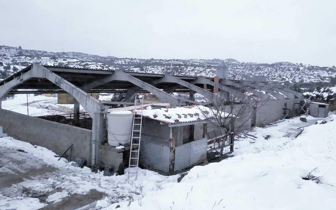 Numerosas explotaciones agrarias del territorio han sufrido el derrumbe del techo / UAGA