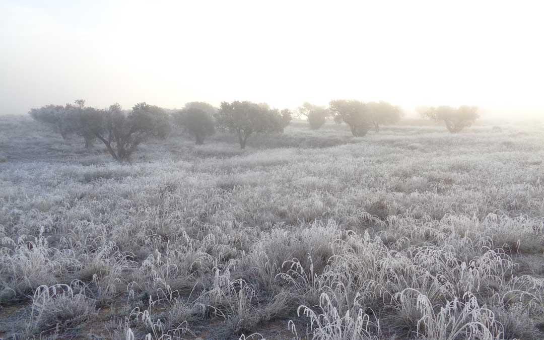 Niebla y frío en Urrea de Gaén / Blog Valdecara