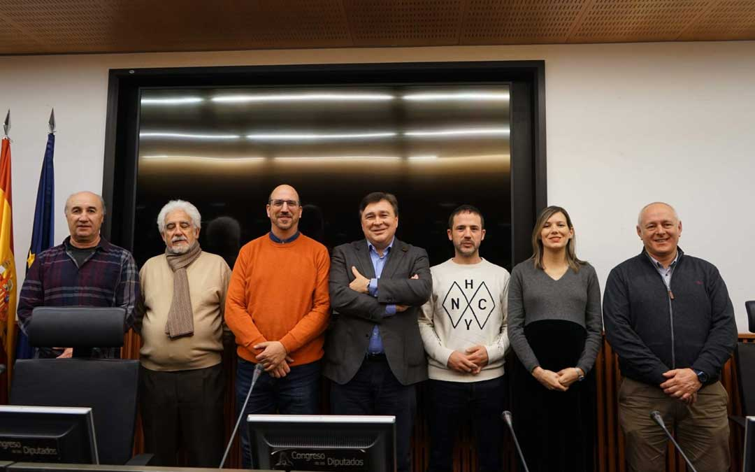 El diputado y los senadores de Teruel Existe junto con miembros del movimiento ciudadano este viernes en Madrid