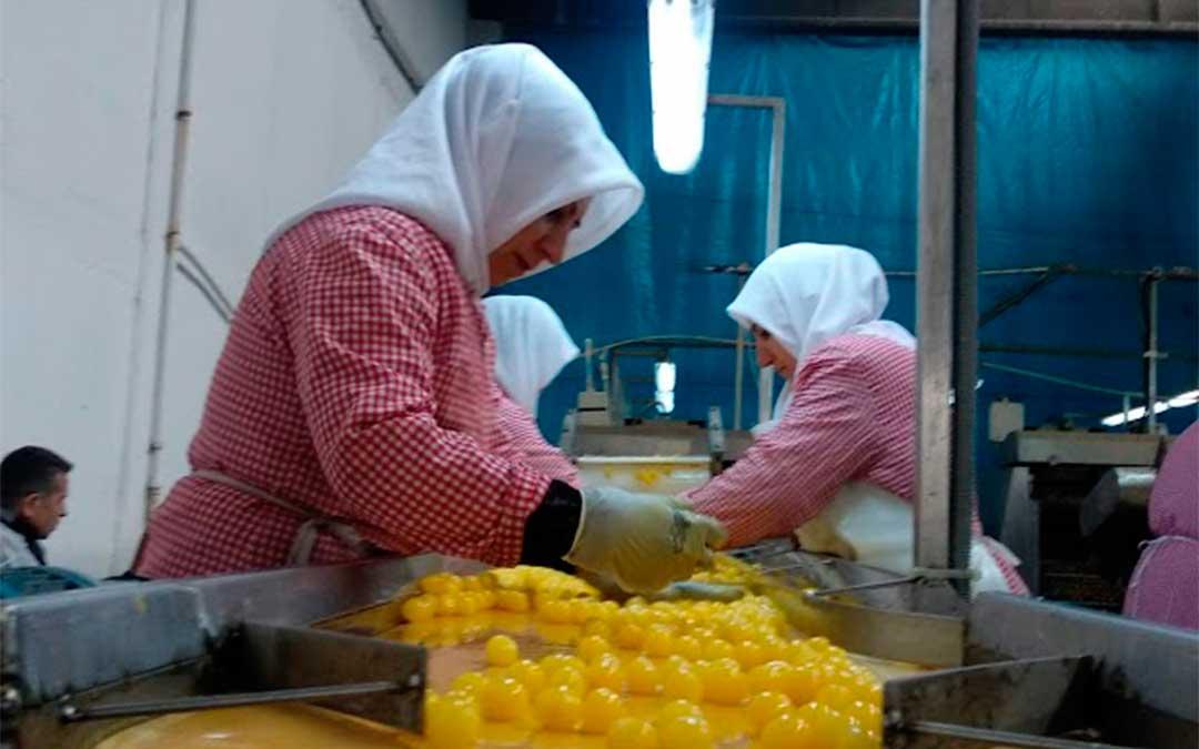 Mujeres trabajando en la fábrica de cereza blanca de Eregli./ La Comarca