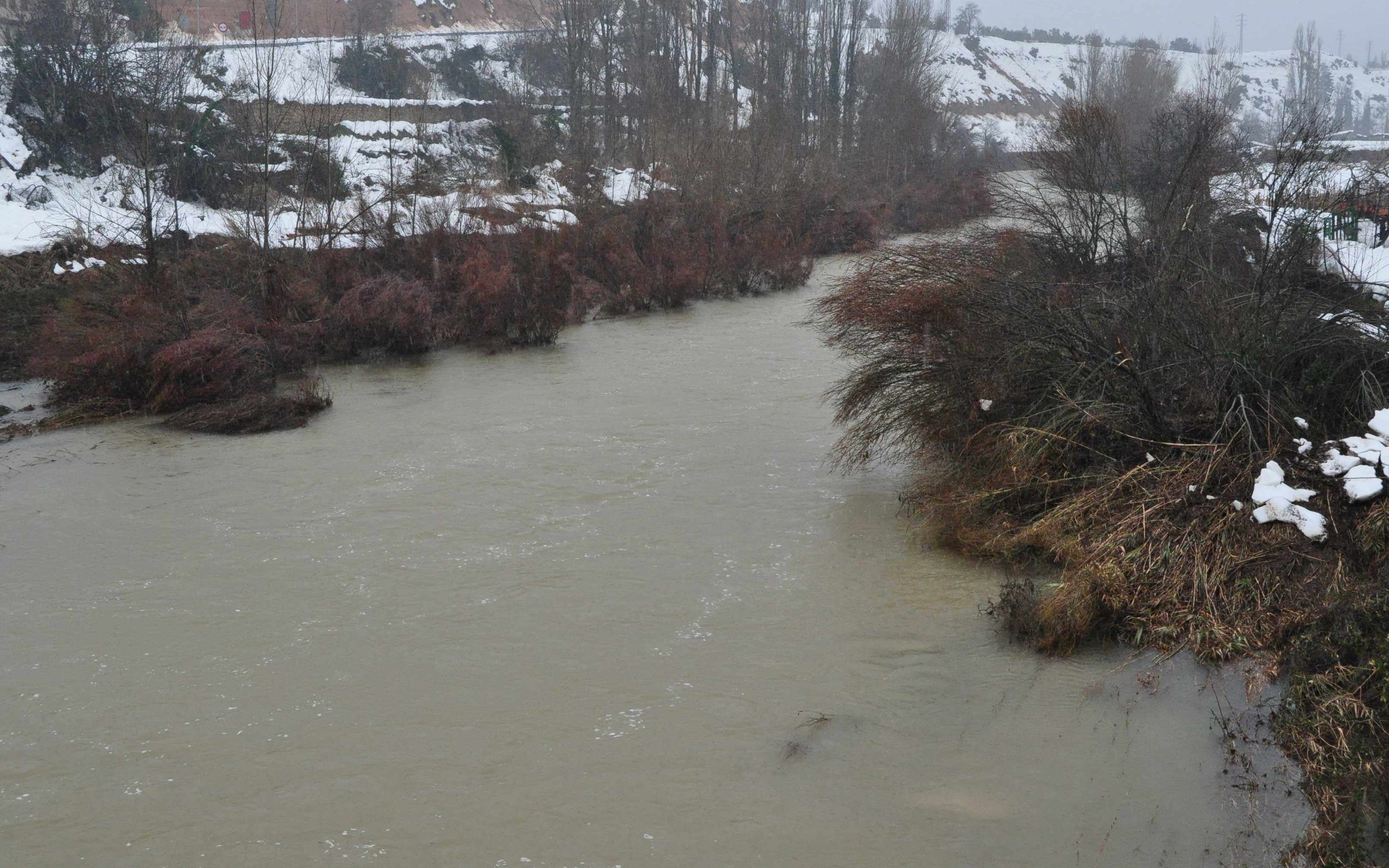 En Valderrobres preocupó la maleza existente en el cauce del río. En la imagen se aprecia cómo las cañas y matorral indican el nivel que alcanzó la riada durante la noche anterior.