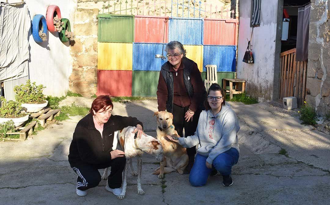 La protectora de Caspe ADAMA busca un nuevo hogar para sus animales