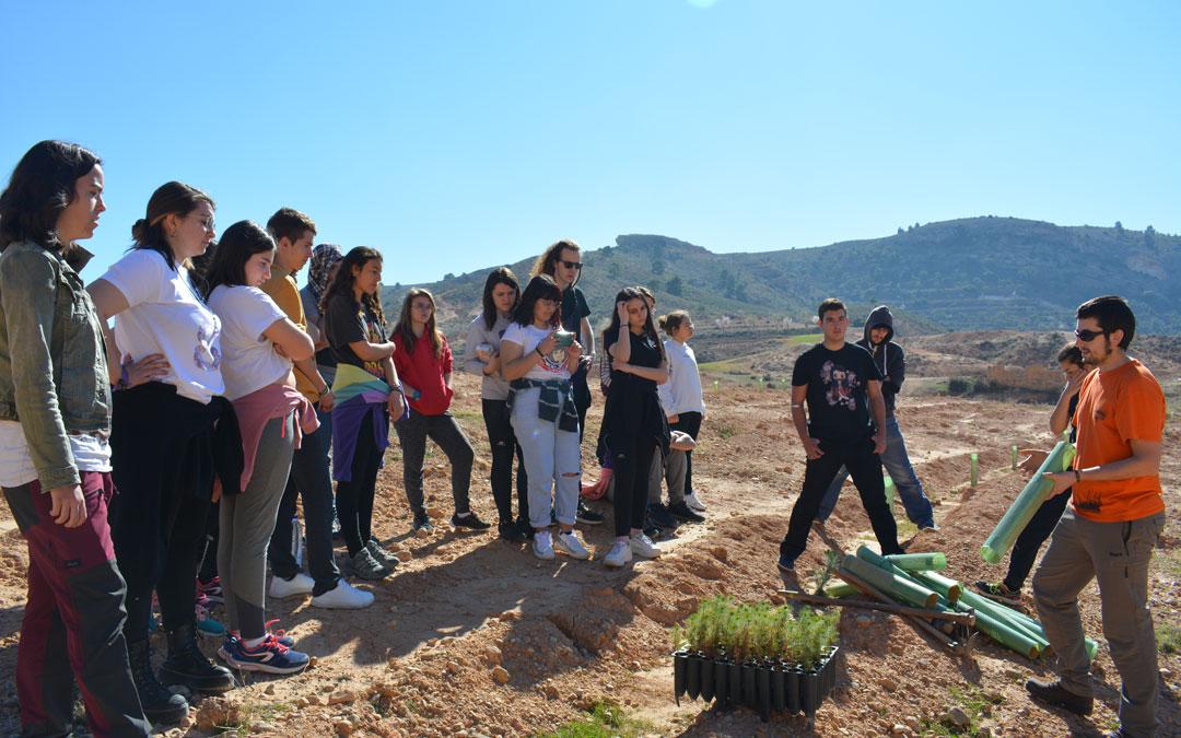 Los participantes realizan la plantación de árboles./I.M.