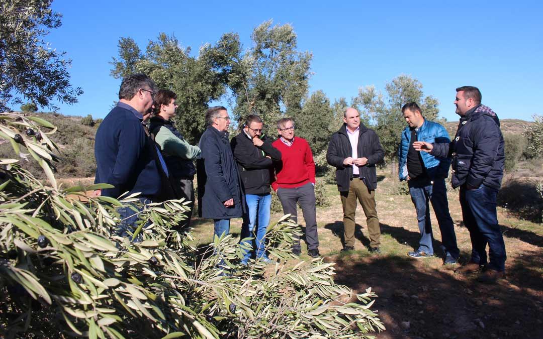Beamonte junto a otros responsables autonómicos y comarcales en su visita a Castelserás este lunes para conocer los efectos en el campo / L. Castel