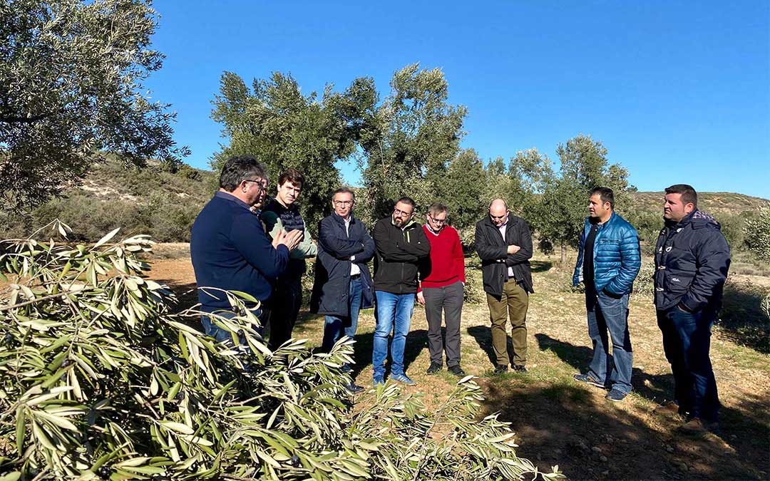 Beamonte ha visitado Castelserás, donde ha conocido de primera mano las consecuencias que el temporal Gloria ha dejado en los campos de olivos./ PP