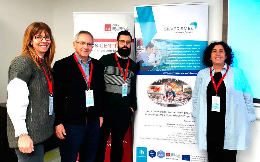La delegación turolense en la reunión del programa SILVER SMEs en Cork (Irlanda)./ DPT