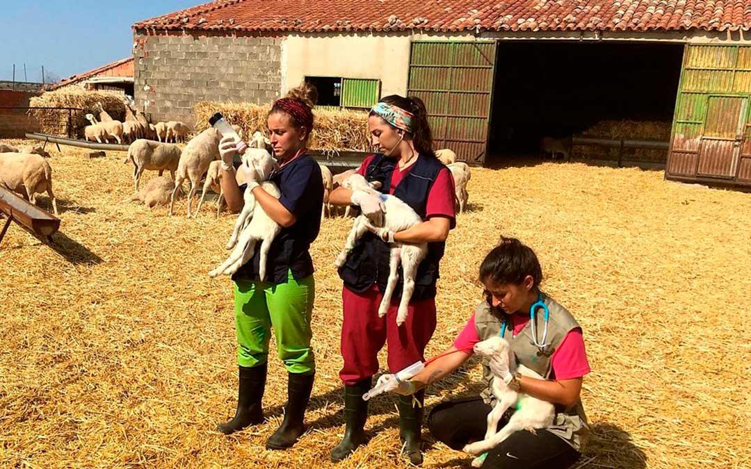 Participantes en el anterior Erasmus Rural.