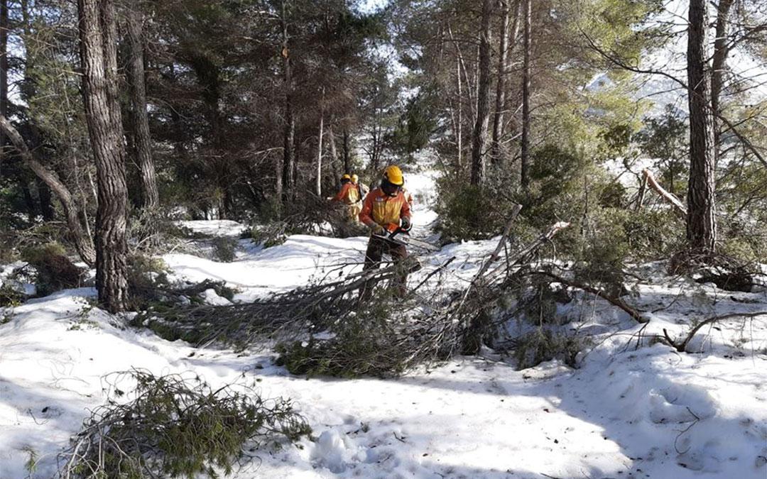 En las comarcas del Bajo Aragón, Matarraña y Maestrazgo se han visto afectadas 7.000 hectáreas./ Pedro Polo