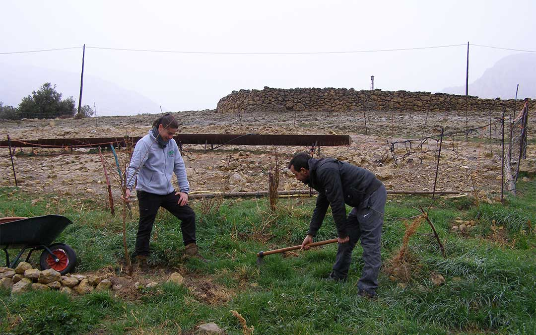 Raúl y Sinhue, un colaborador en el proyecto