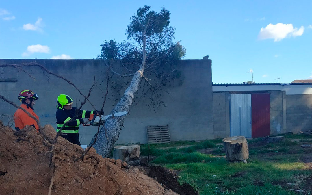 Los bomberos de Alcañiz se han desplazado a Puigmoreno para retirar los árboles./ Bomberos de la DPT