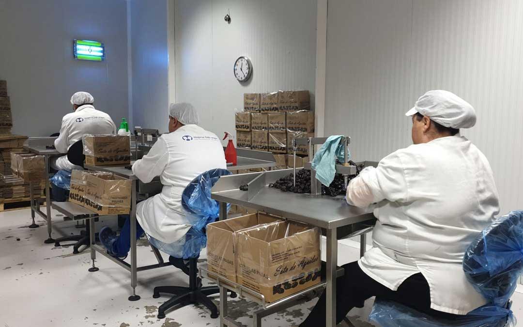 El centro especial de empleo de Asapme Bajo Aragón en Calanda, sigue en activo con el deshuesado de ciruela aunque en servicios mínimos y en un solo turno. La parte de Centro de Día se trata de suplir con videollamadas.