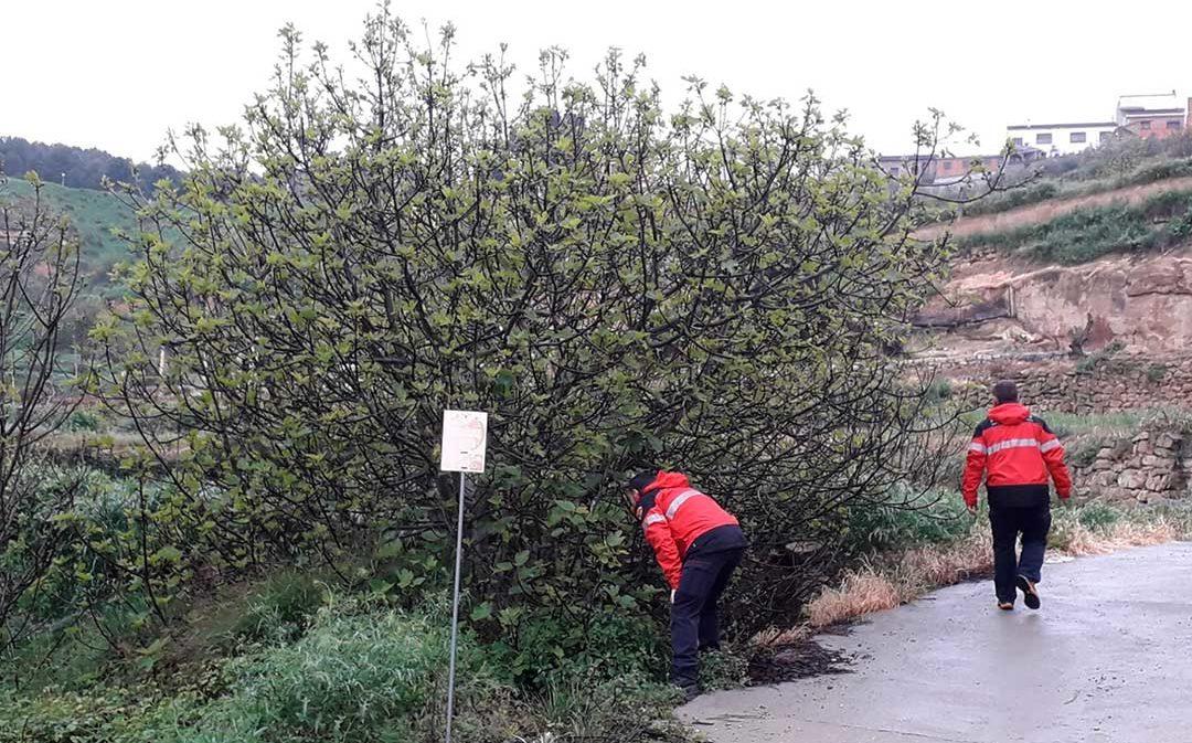 Mil hectáreas rastreadas para encontrar a la vecina de Caspe