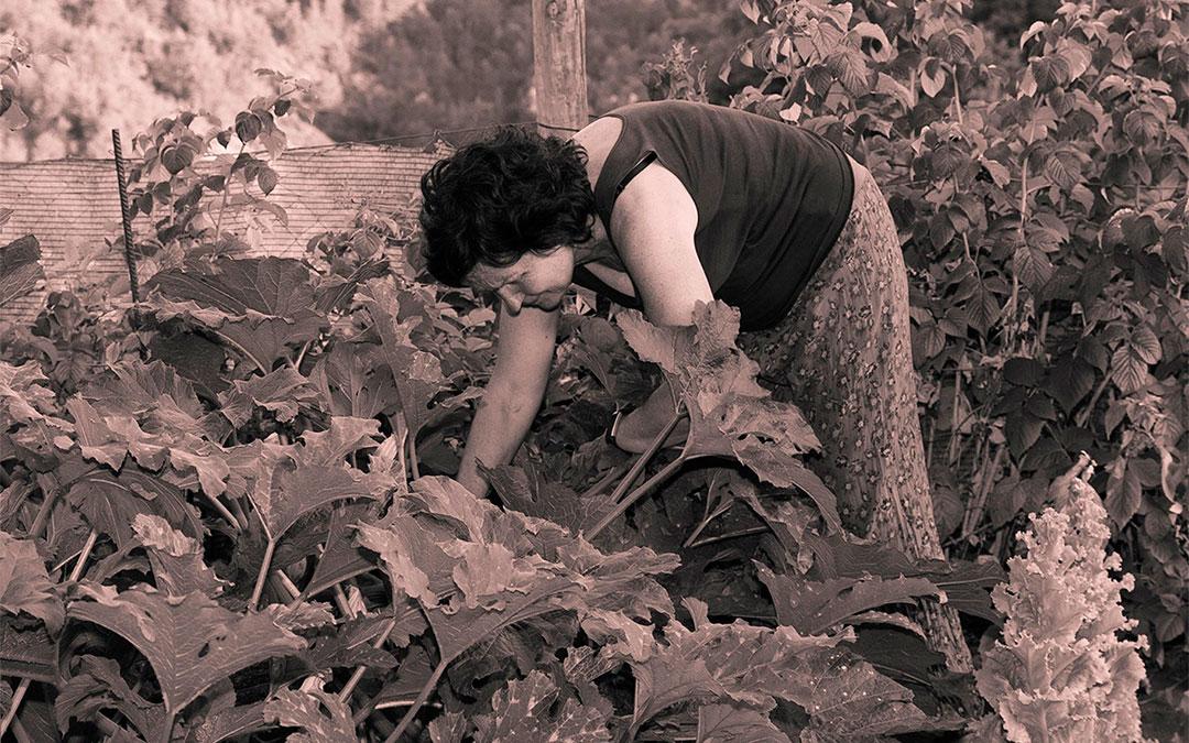 Cartel de la exposición fotográfica 'Ellas son campo'./ DGA