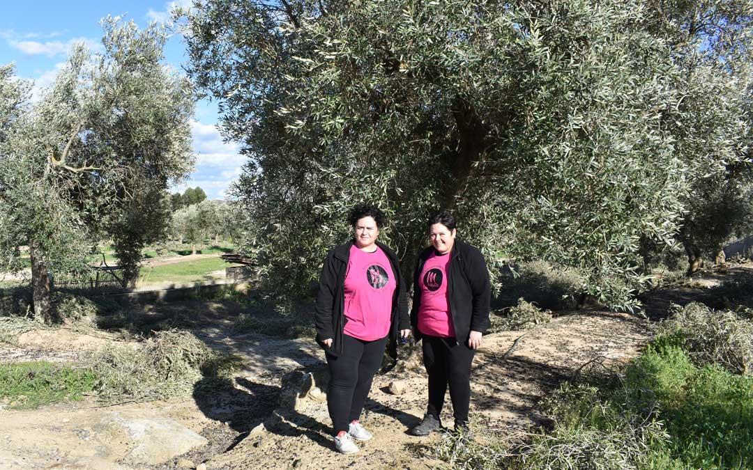 Concha y Antonia Molina junto a su burra Blasa, el jueves, en uno de sus campos de olivos a las afueras de Caspe / Laura Quílez