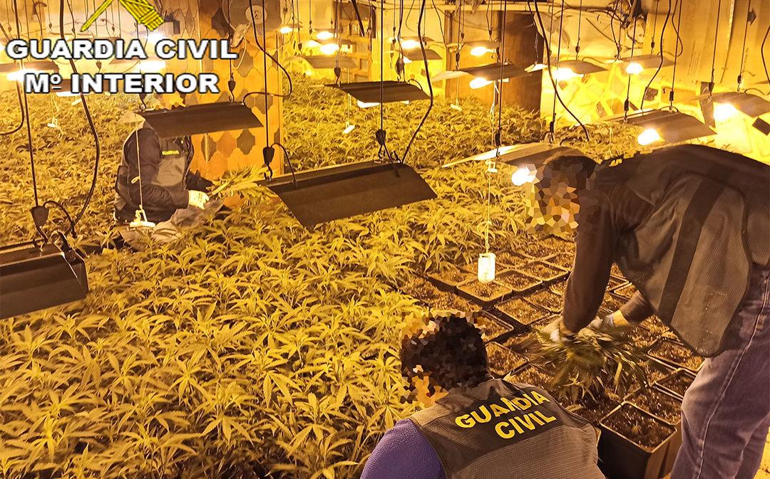 Desarticulan en Escucha una organización que se dedicaba al tráfico de drogas